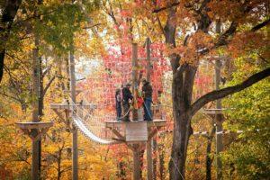 Fall_Zipline_Family_High Ropes