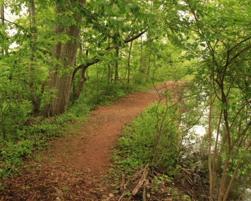 pond_path