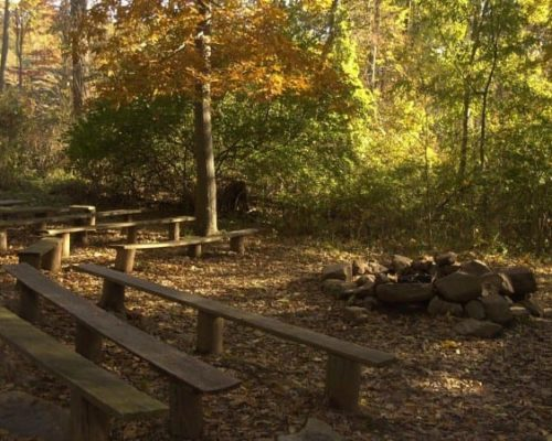 Campfire Area in the Fall