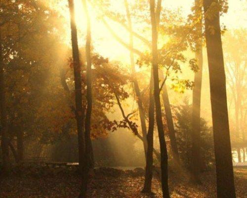 Hiking_Fall_Pond
