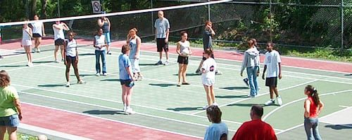 Volleyball_Company Picnic_Summer