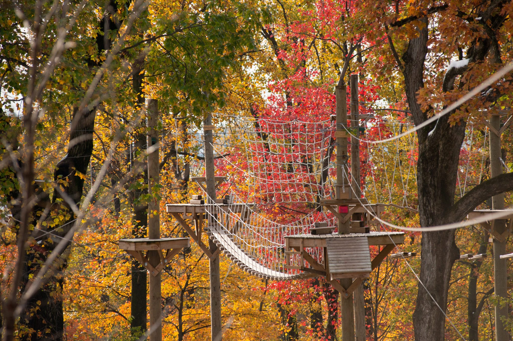 High Ropes_Winter_Challenge Adventure_Things to Do
