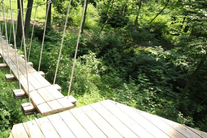 Aerial Excursion_Zipline_Activities_Women