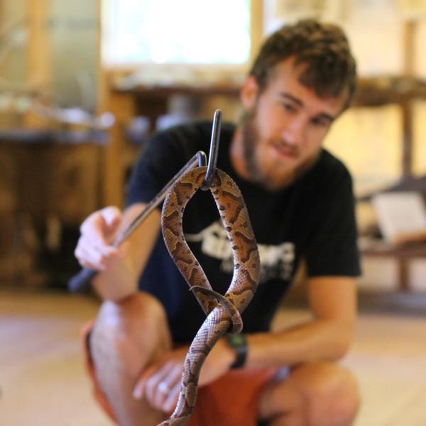 Snake_Staff_Copperhead_Nature Center