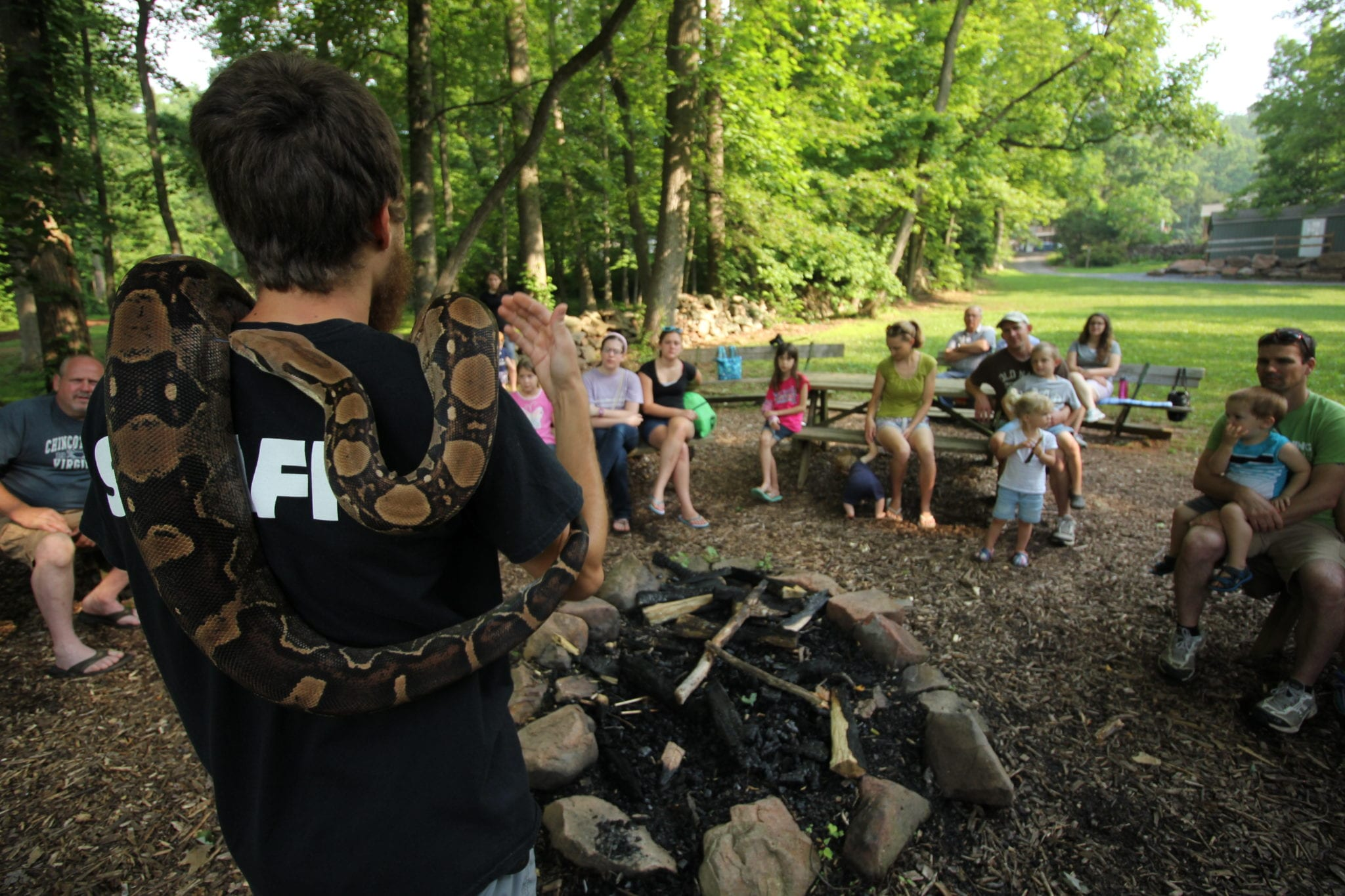 Nature Reptile Lesson Summer