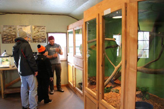 Nature Center_Winter_Hands On_Staff_Snake