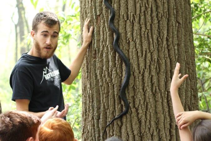 Nature Studies_School Group_Mark_Snake
