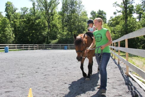 Fun Horseback Riding Lessons for Kids