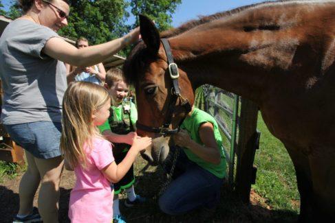 Farm Animal Experience_Horse_Children_Summer