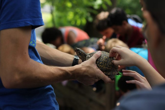 reptiles and amphibians program in Lancaster pa