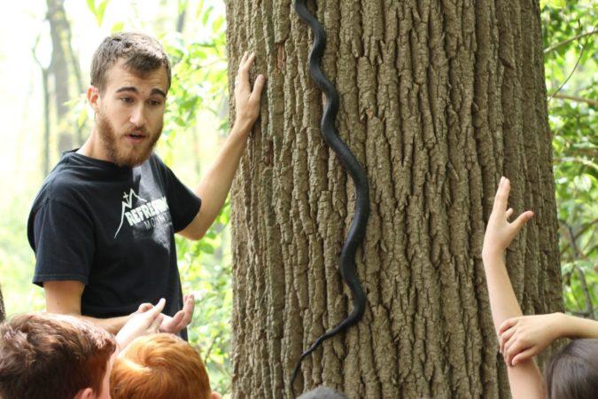 amphibians and reptiles program at refreshing mountain