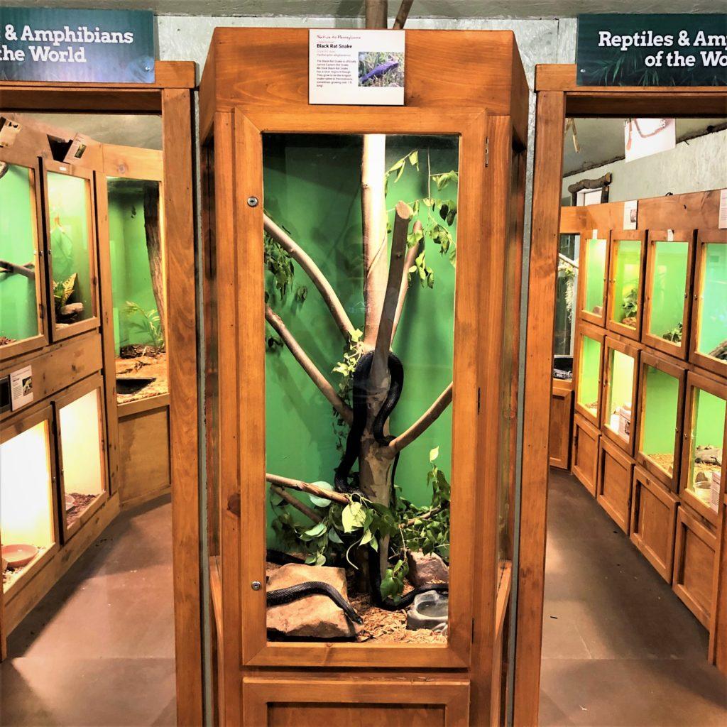 Wildlife Center Snake Exhibit